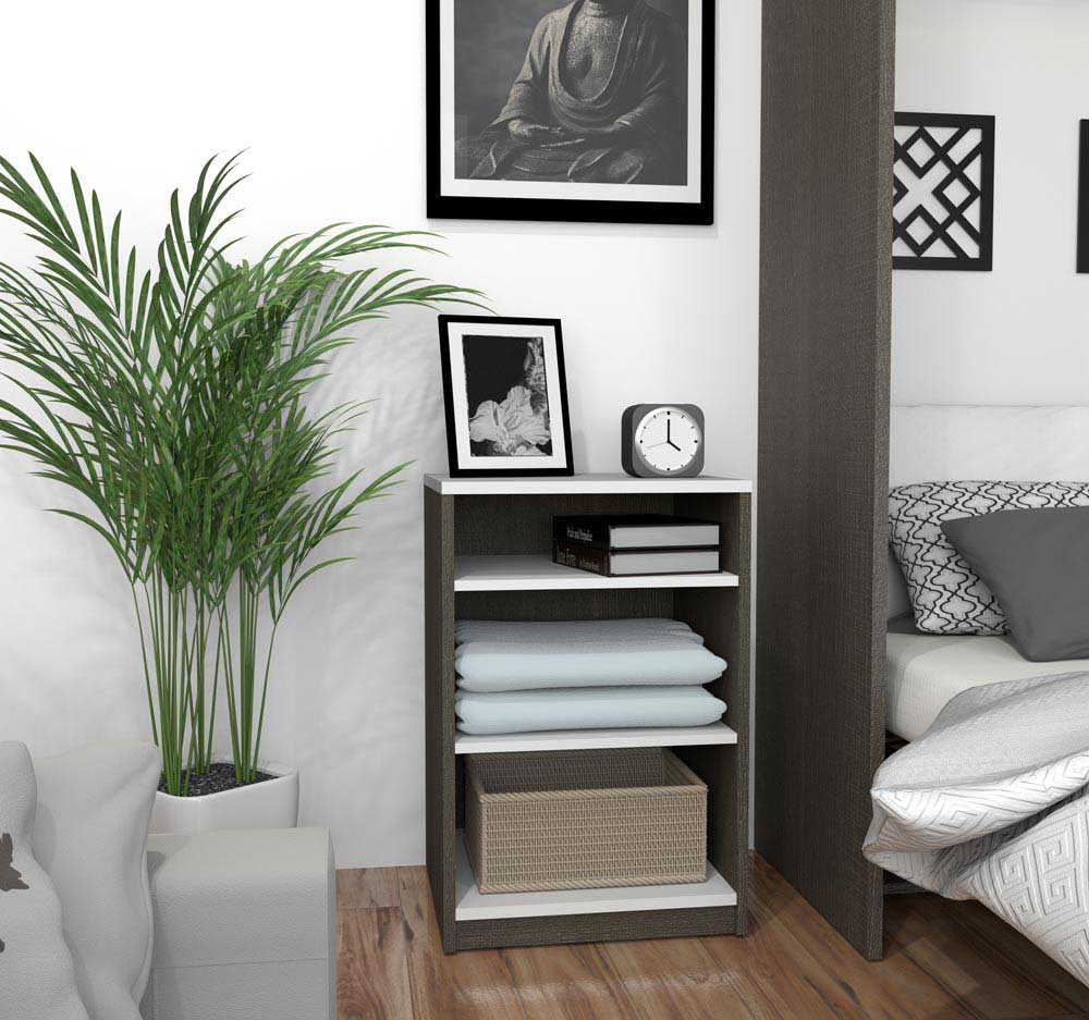 3 bonnes raisons d'avoir des plantes dans votre maison