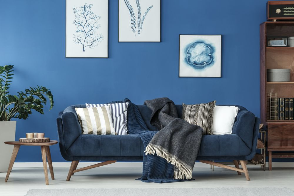 Living room with trendy blue couch