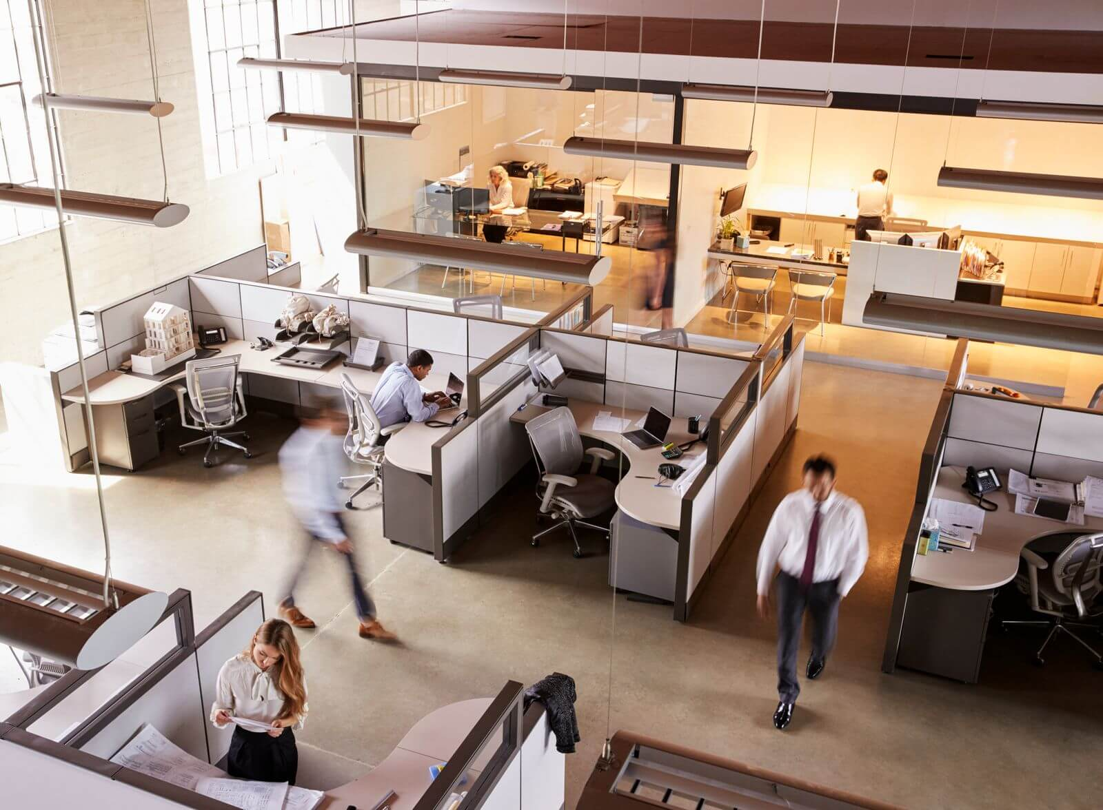 Office cubicles with workers