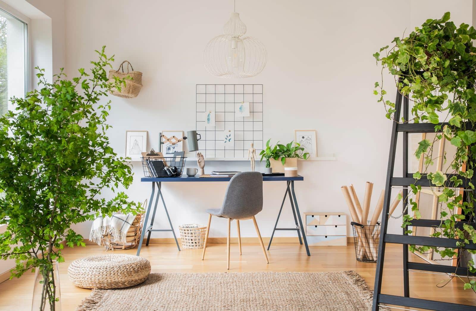 Bureau à domicile rempli de plantes