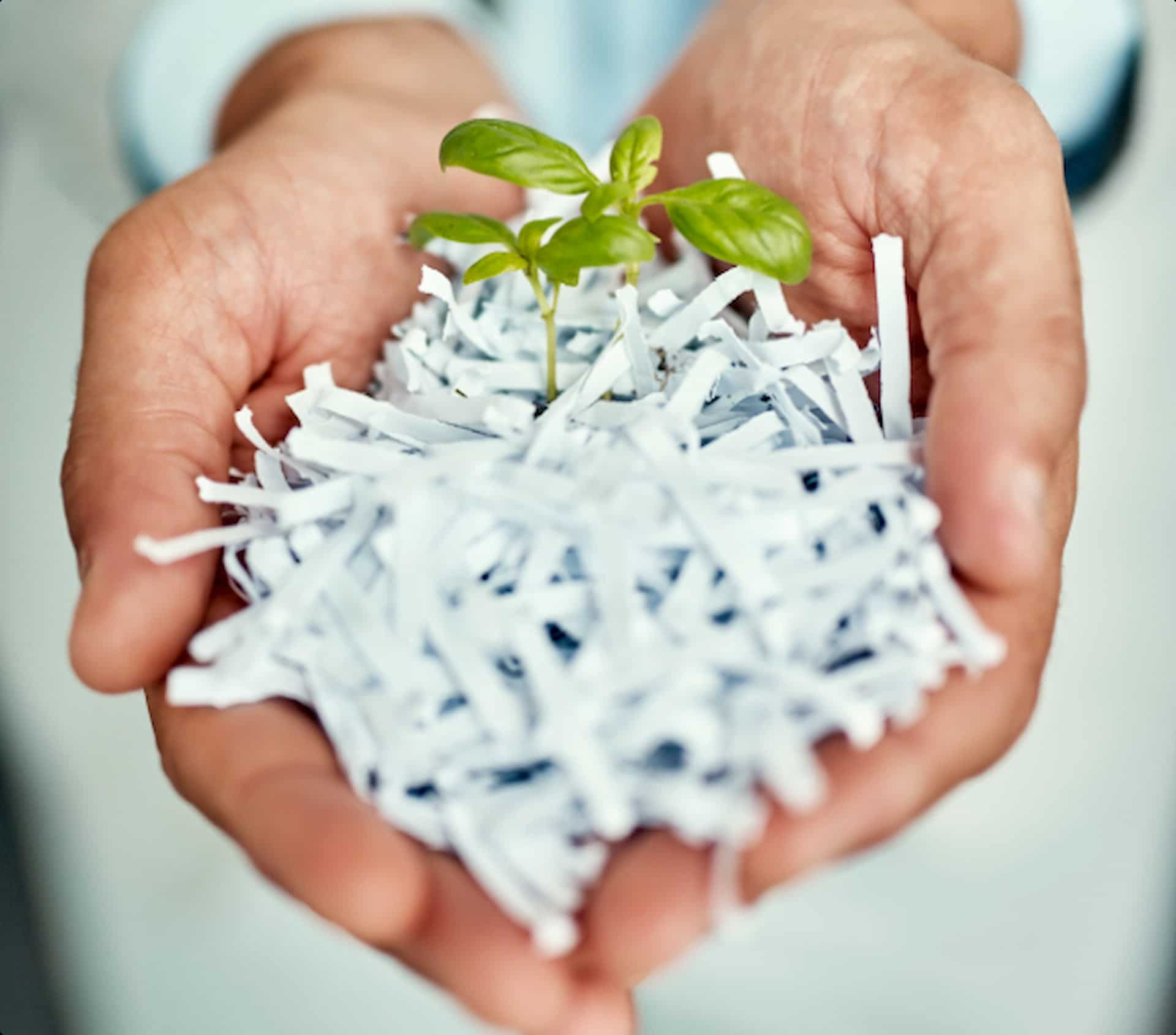 Man with cutted paper in his hands